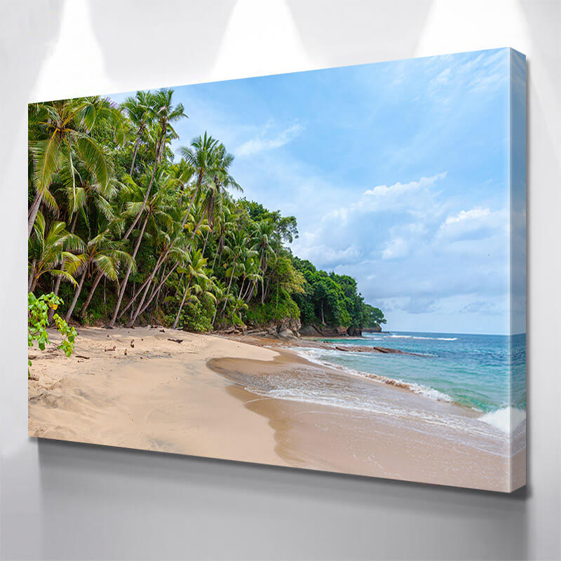 Saint Thomas Beach Wall Art Canvas Art