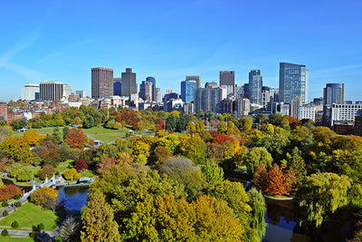 Beatiful Day Boston Park Skyline Wall Art High Quality Print Wall Art