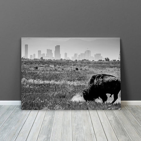 Denver Black & White Colorado Buffalo Wall Art Canvas Art