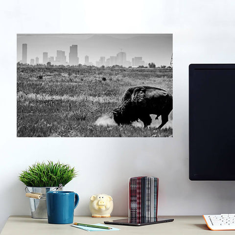 Denver Black & White Colorado Buffalo Wall Art Wall Decal Wall Art
