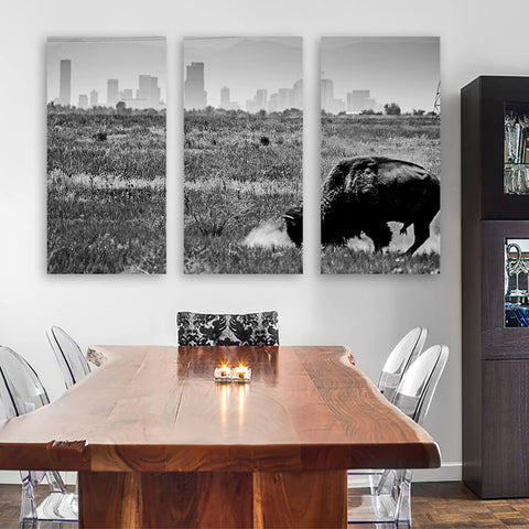 Denver Black & White Colorado Buffalo Wall Art Multi Panel Canvas Wall Art