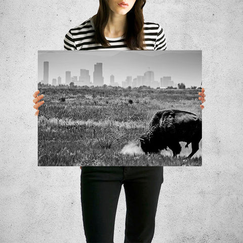 Denver Black & White Colorado Buffalo Wall Art High Quality Print Wall Art