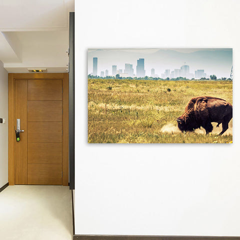 Denver Buffalo Grazing Skyline Wall Art Canvas Art