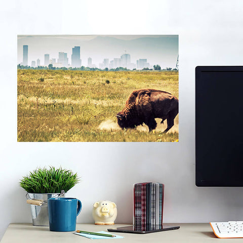 Denver Buffalo Grazing Skyline Wall Art Wall Decal Wall Art