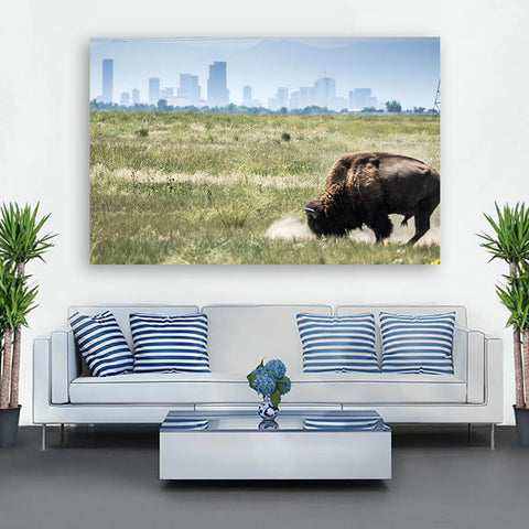 Denver Colorado Buffalo Skyline Wall Art Canvas Art