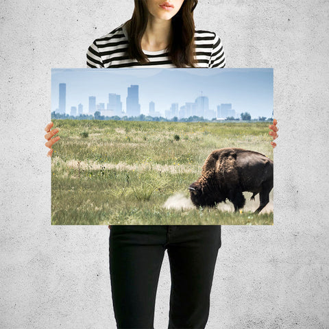 Denver Colorado Buffalo Skyline Wall Art High Quality Print Wall Art