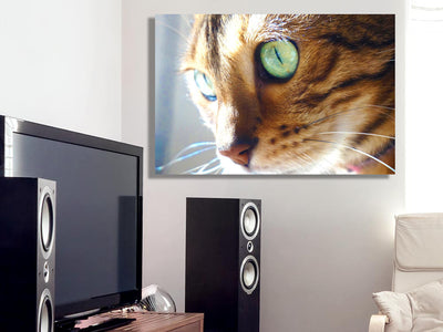Zapwalls Canvas KIARA THE BENGAL CAT CANVAS