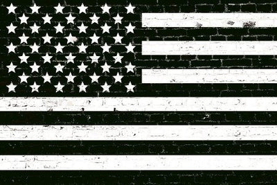 Zapwalls Decals American Black & White Flag