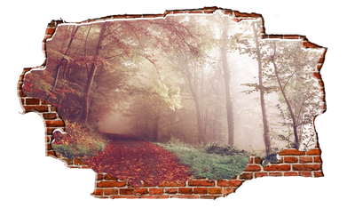 Zapwalls Decals Fall Forest Trail Breaking wall Nature