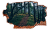 Zapwalls Decals Forest Path Breaking wall Nature