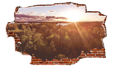 Zapwalls Decals Forest Pound Bright Sunset Breaking wall Nature