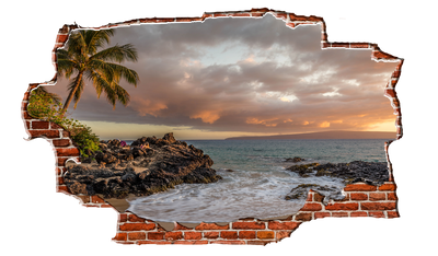Zapwalls Decals Hawian Costal Palm Tree Breaking wall Nature