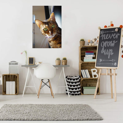 Zapwalls Decals Kiara The Bengal Cat 2 Wall Graphic