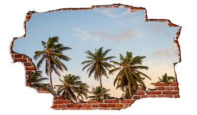Zapwalls Decals Paradise Island Palm Trees Breaking wall Nature