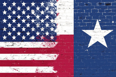 Zapwalls Decals Texas & American Flag Art