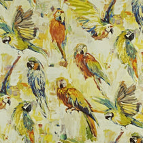 Macaw Rainforest Curtains