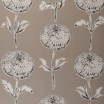 Dahlia Taupe Wallpapers