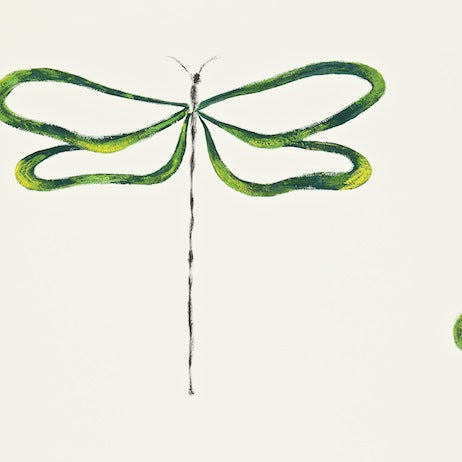 Dragonfly Emerald Lime Onyx and Chalk Wallpapers
