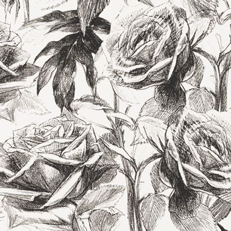 Empress Rose Black White Wallpapers