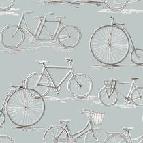 Penny farthing Duck Egg Roller Blinds