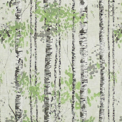 Birch Sage Curtains