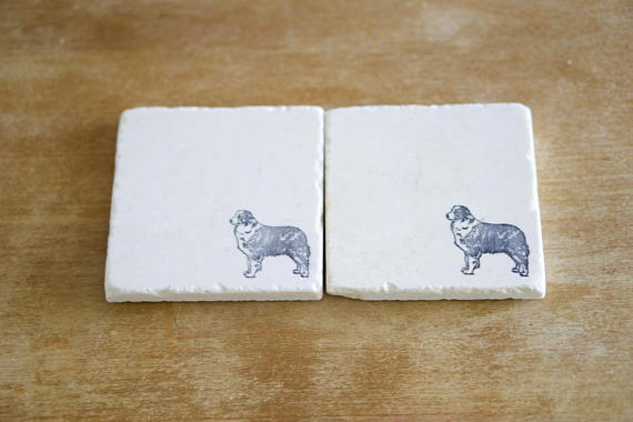 Australian Shepherd Coaster or Trivet Set