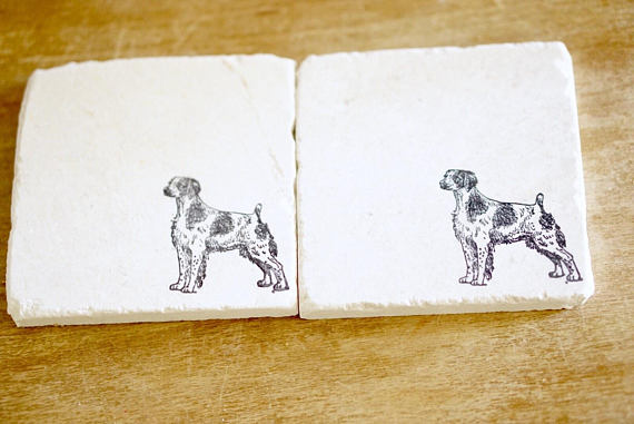Brittany Spaniel Coasters