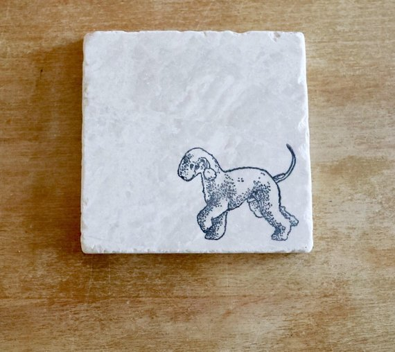 Bedlington Terrier Coasters