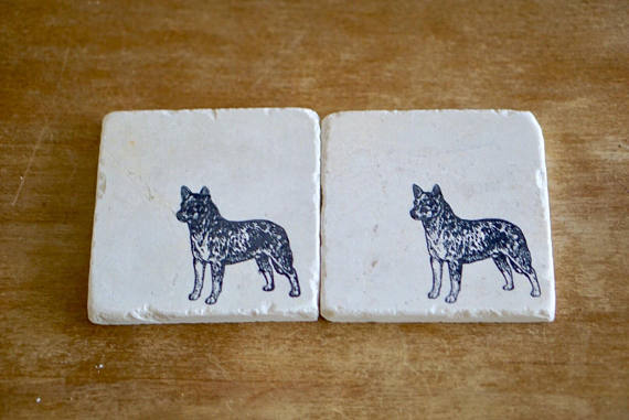 Blue Heeler Coaster or Trivet Set