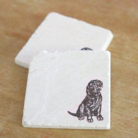 Brown Lab Coasters