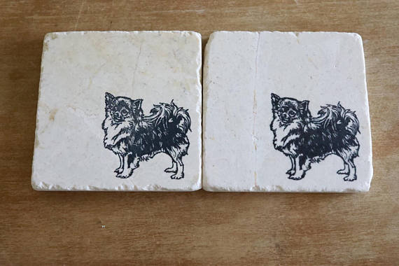 Chihuahua (long hair) Coasters