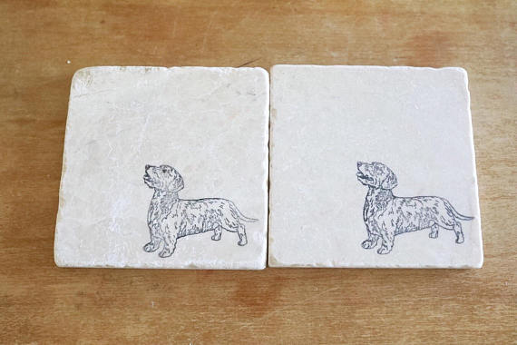 Dachshund (long hair) Coasters