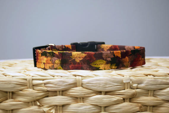 Golden Fall Leaves Collar