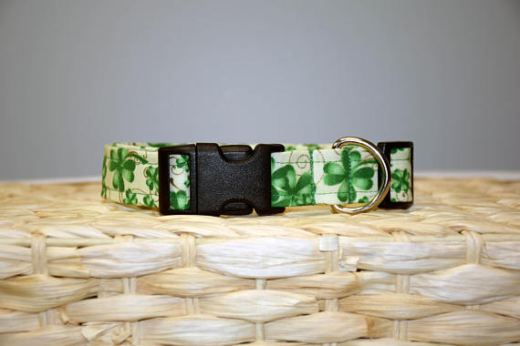 St. Patrick's Day Shamrock Collar