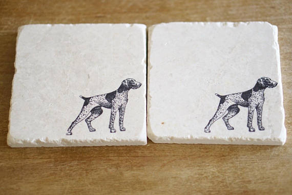 German Shorthaired Pointer Coasters