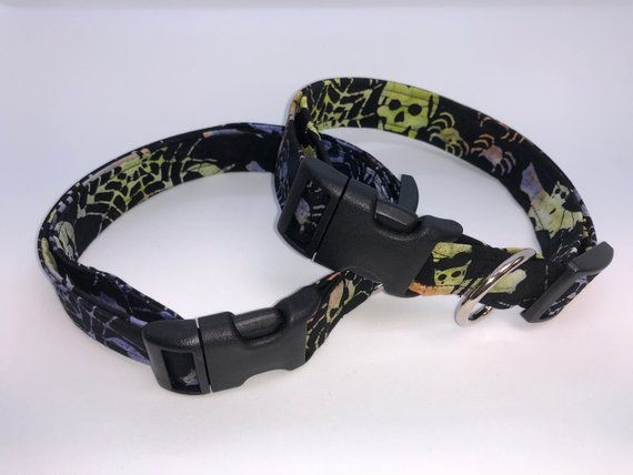Halloween Burnout Collar