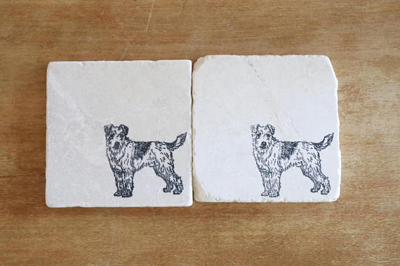 Jack Russell Wire Hair Coasters