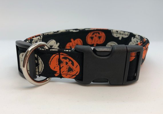Black Pumpkin Collar