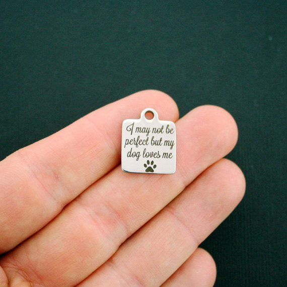 'I May Not Be Perfect, But My Dog Loves Me' Charm