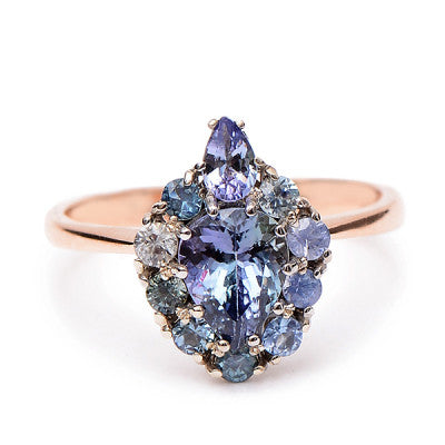 Tanzanite and Sapphire Turtle Ring - Lori McLean