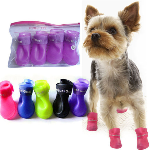 Dog Clothes, Shoes & Accessories