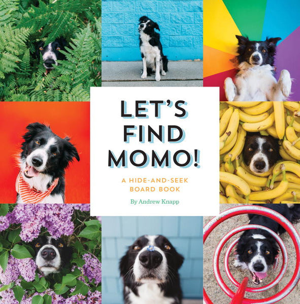 Let's Find Momo!