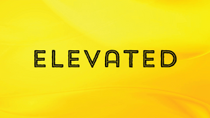 ****ELEVATED* (8% off)
