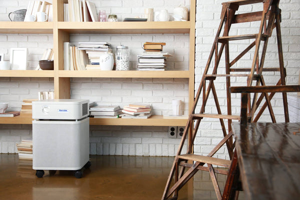 The Air Purifier Buyer's Guide