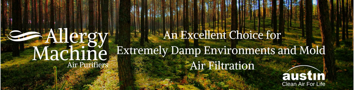 Allergy Machine Air Purifiers and Filters for Extremely Damp Environments and Mold