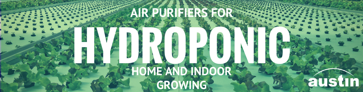 Austin Air Purifiers for Hydroponic Growing