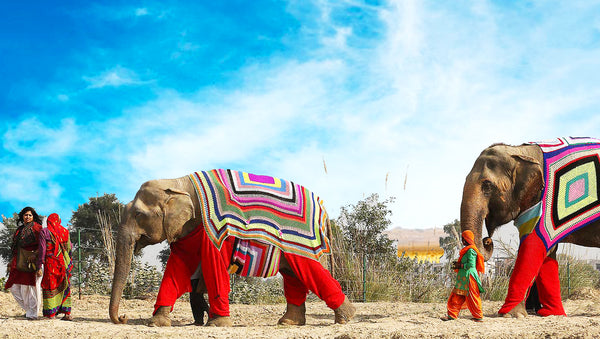 Home Design Company Thomas Fuchs Creative Dresses Elephants in Missoni Like Garments