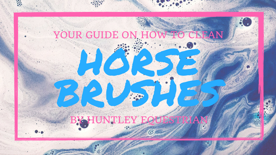 A Guide on How to Clean Horse Brushes