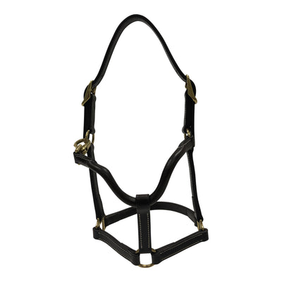 Huntley Equestrian Fancy Stitched Adjustable Premium Leather Pony Halter with Brass Hardware