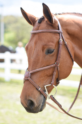 Huntley Equestrian Sedgwick Leather English Bridle Pieces
